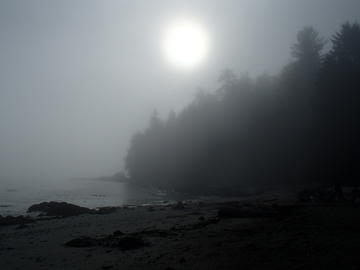 Sea kayaking fog west coast